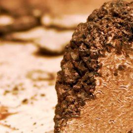 Tartufo del Molise: il profumo dei boschi molisani
